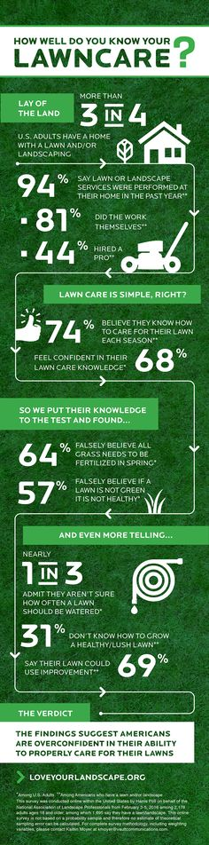 The best lawn care tips from experts