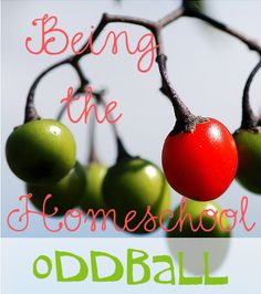 Being the Homeschool Oddball. How I'm different from my IRL (in real life) homeschool friends and how I deal with it. @jimmiescollage