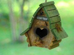 little house in green Natural Homes, Bird Houses, Bird Feeders, Habitats, Cool Pictures, Backyard, Birds, Wallpaper, Outdoor Decor