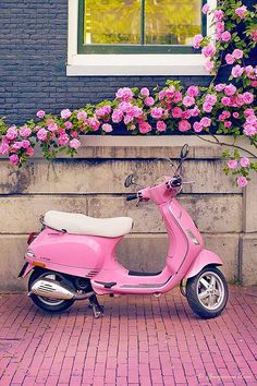 Europe Photography - Pink Scooter and Roses, Fine Art Travel Photograph, Nursery Art, Large Wall Art Europe Travel Photography Title: Pretty in Pink The cutest pink Vespa, parked just perfectly under Pretty In Pink, Pink Love, Cute Pink, Pretty Roses, Vespa Rose, Pink Vespa, Tout Rose, Photo Wall Collage, Everything Pink