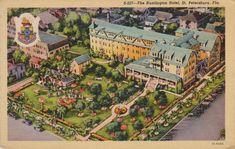 Sun News, St Petersburg Florida, Purple Butterfly, Printing Press, Scrapbooking, Vintage Postcards, Saints, Things To Come, Scrapbook