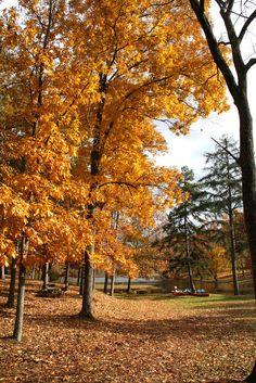 Shawnee State Park, Ohio