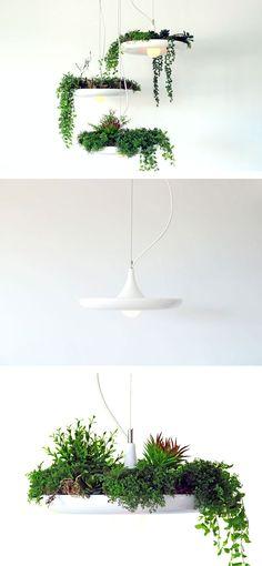 Lumigado Lighting + PinkLion / IAMTHELAB - Your Handmade Laboratory