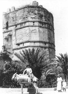 ¿Sabíais que las murallas de Sevilla contaron con 7 kilómetros de muros? 166 torreones, 13 puertas y seis postigos