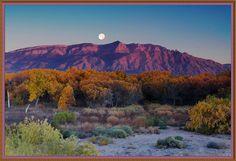 Hunter's Moon on the Bosque  Sandia Mountains   Albuquerque, New Mexico  (photo credit - Kevin Eddy)
