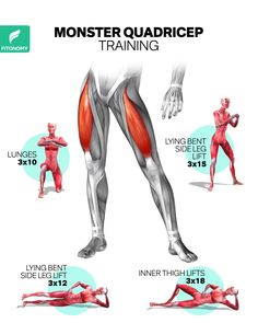 Leg Workout At Home, Full Body Gym Workout, Gym Workout Tips, Fitness Workout For Women, Fit Board Workouts, At Home Workouts, Summer Body Workouts, Gym Workout For Beginners, Muscular Legs Workout