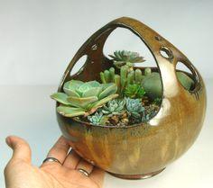 Table top Succulent Planter