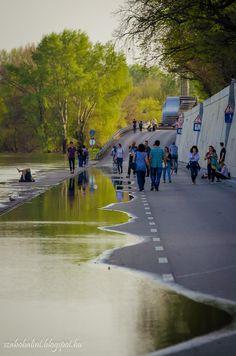 Szeged - Tisza - Víz  Szabó Bálint fotója