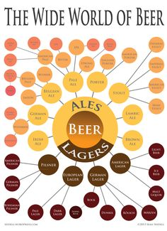 A visual description of the types of beer including ales, lagers and their subset varietals.