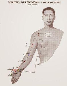 Therapies psycho-energetiques -  Les Ailes du Papillon: Le Méridien du Poumon