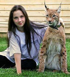 Weird pets #pets #animals