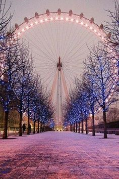 London Eye in Winter, London, England. I have a pic similar to this but in the Spring. I miss London as a tourist. Amazing Photography, Nature Photography, London Photography, Eiffel Tower Photography, Photography Ideas, Travel Photography, Photography Hashtags, Christmas Photography, Photography Classes