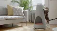 Evan Ryan of WISKI has created The Cone, a modern cat bed that doubles as a scratching post.