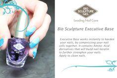 Bio Sculpture executive base