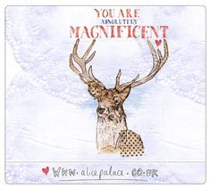 magnificent you [no. 97 of 365]