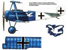 Vintage Biplanes Fokker Dr I, Leutnant von Raben, Jasta 1917 Fighter Aircraft, Fighter Jets, Fokker Dr1, Airplane Painting, Old Planes, Rabe, Aircraft Design, Emergency Vehicles, Aviation Art
