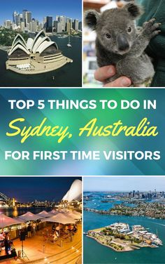 Top 5 Things to Do in Sydney for the First-Time Visitor Sydney is a wonderful city full of amazing activities for any taste. Find out how to spend an amazing day in this great city New Zealand Cruises, New Zealand Travel, Sydney Australia, Australia Trip, Western Australia, Visit Australia, Queensland Australia, Stuff To Do, Things To Do