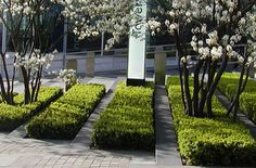 Hedging | Tower Place, London by Townshend Landscape Architects