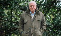 David Attenborough's rousing, horrifying call to arms should do for climate change denial what Blue Planet did for plastic Climate Change Denial, David Attenborough, Cute Creatures, The Guardian, Winter Jackets, Facts, Environment, Zero Waste