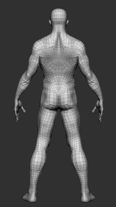 male basemesh 3d model
