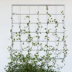 Zinc Lattice Wall Panel