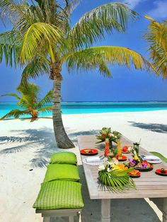 Harbour Island in the Bahamas is a excellent little island with beautiful beaches, a great restaurant culture and friendly, inviting atmosphere. Vacation Places, Dream Vacations, Vacation Spots, Paradis Tropical, The Beach, Tropical Beaches, Island Beach, Small Island, Tropical Paradise