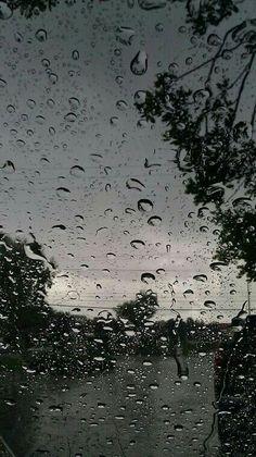 Rain love...