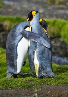 Judy B - Google+ hugs so sweet :)