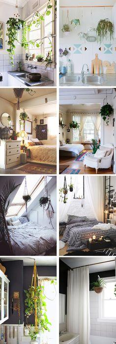 plantas colgantes 3 Reggio Emilia, Lean To, New Room, Home Bedroom, Decor Interior Design, Architecture Design, Kitchen Decor, Sweet Home, New Homes