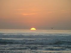 My favorite thing watching the sun sink into the sea !~!!!