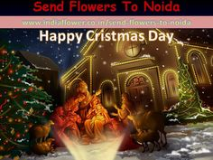 Send Flowers To Patna through buy flower at great price value online florist patna, same day patna flowers delivery, midnight flower delivery to patna place your order here. Happy Christmas Day, Christmas Night, 24 7 Delivery, Online Florist, Christmas Nativity Scene, Valentine Day Special, Gift Cake, Send Flowers, Flower Delivery