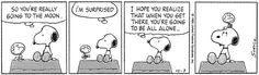 This strip was published on October 3, 1995. Snoopy and Woodstock.