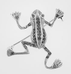 Marcasite Frog Pin - Sterling Silver Jewelry Box, Jewelery, Sunflower Jewels, Mirror Jewelry Armoire, Marcasite Jewelry, Fool Gold, Art Nouveau Jewelry, Diamond Are A Girls Best Friend, Personalized Jewelry