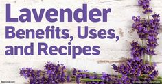 Lavender is a perennial flowering shrub that has been used by ancient civilizations for perfumes and mummification, or to wash and help purify the skin. http://articles.mercola.com/herbs-spices/lavender.aspx