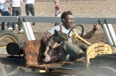 Pig n'Ford racing is quite possibly the oddest race in the world. Click to find out more... #madness #spon