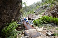 The award-winning MacKenzie Falls Gorge Trail project moulds innovation with a back-to-basics approach to deliver a bold design solution and enhanced visitor experience for one of Australia's largest waterfalls, located within the Grampians National Park, Victoria. hansen partnership was engaged by Parks Victoria to prepare a concept plan for the MacKenzie Falls Precinct under their...