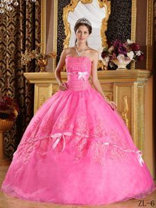 Organza Rose Pink Ball Gown Strapless Dresses for Quinceanera with Appliques