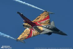 Dassault Rafale C French Air Force, in special scheme for NATO Tiger Meet 2014.
