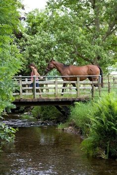 @beyjess12 // Leading your horse across a wooden bridge in the gloriously green country