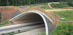 Green bridge Wattenheim