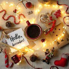 Чего все ждут от декабря? Что он не будет лететь так стремительно, что чуть-чуть больше будет магии, и будут хлопья снега чтобы под ними погулять, и выйдет хорошее зимнее кино, чтобы его посмотреть, и подарки под елкой окажутся те, которым можно удивиться. Волшебный месяц!