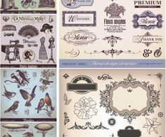 Decorative vintage elements and illustrations vector / hand drawn elements
