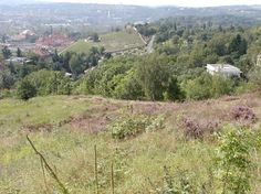 Hills above our house - Pustavnice (there used to be vinyards) and down below in the ravine a spring-fed creek Haltýře