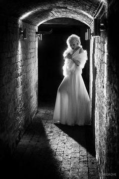 Film Noir ~ A Hollywood style reborn