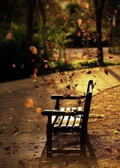 Autumnal thinking….