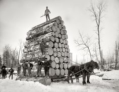Is it just me, or are these lumberjacks completely insane?