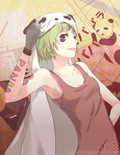 Panda Hero by Akimiya on DeviantArt