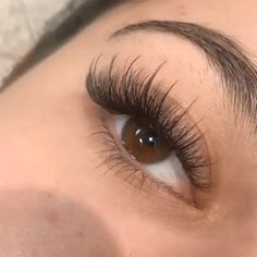 The best easy fan volume lashes and off! GEMERRY is the professional eyelash extensions supplies, we can provide wholesales and private label. If you are interested please let us know, we can provide 2 trays free samples. Eyelash Extensions Styles, Volume Lash Extensions, Kylie Jenner Eyelash Extensions, Eyelash Extensions Natural, Individual Eyelash Extensions, Maquillage Kylie Jenner, Natural Fake Eyelashes, Bare Minerals Makeup, Wispy Lashes