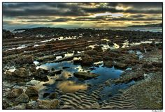 Tide pools in abalone cove, Palos Verdes Ca