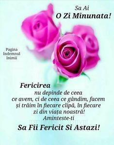Messages, Rose, Floral, Flowers, Plants, Motivation, Pink, Plant